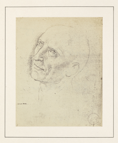 Head of St Jerome