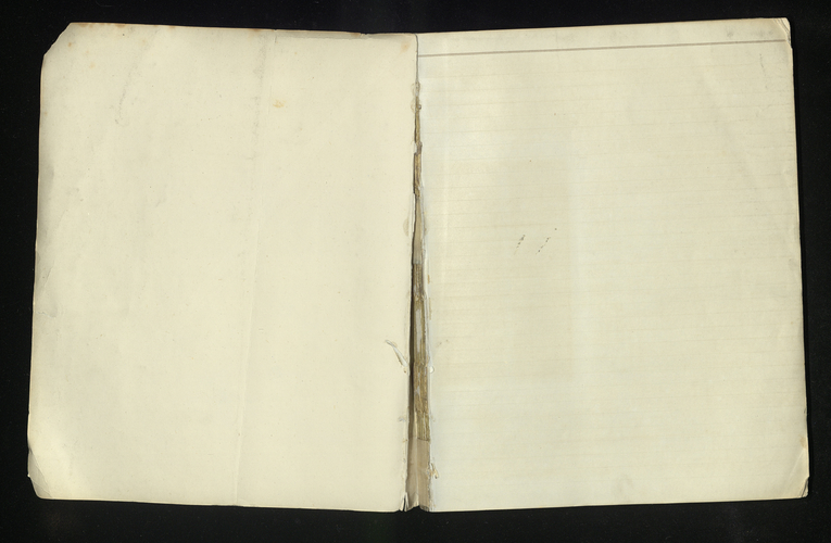 Diary of Albert Edward, Prince of Wales
