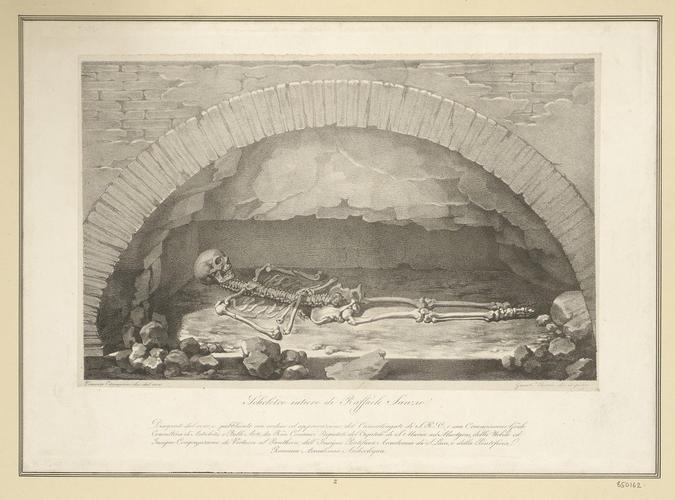 Scheletro interiore di Raffaele Sanzio