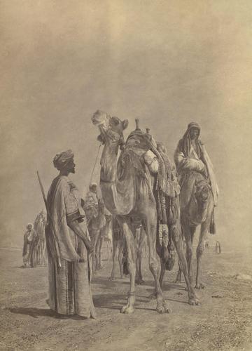 'Camels in the Desert'; Halt in the Desert
