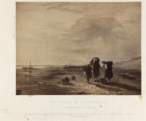 'Sea Coast'