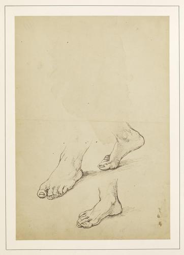 Study of three feet