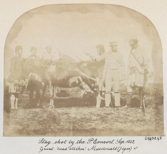 Stag shot by the P Consort. Grant (Head Stalker) Macdonald (Jager) and etc