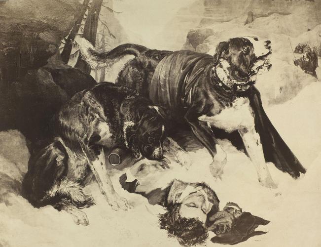 'Alpine Mastiffs'; Alpine Mastiffs Reanimating a Distressed Traveller