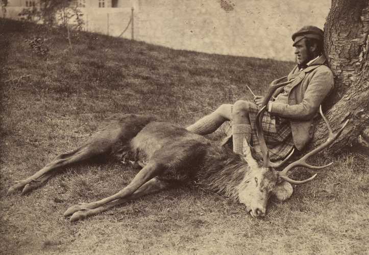Photograph of Donald Stewart (1827-1909) with stag shot by the Prince Albert