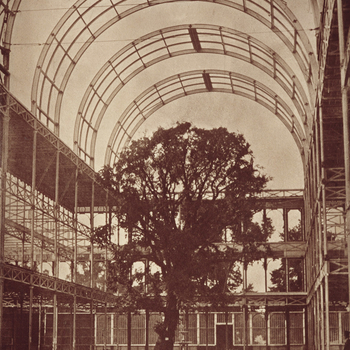 Photograph of the interior of Crystal Palace. There isa tree in the centre of the composition and a cart in the foreground. A man, wearing a dark colour suit and top hat,stands on the farright side of the photograph.