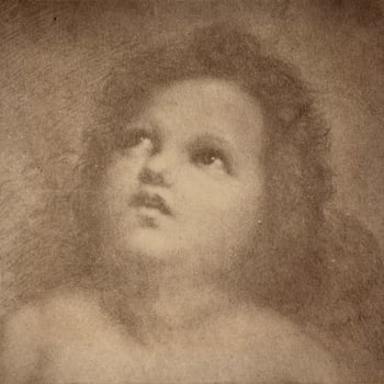 Photograph of a drawing of an angel, or putti, by Raphael (1483-1520). The putti is depicted in a head and shoulder length portrait. He gazes upwards, his chin raised.